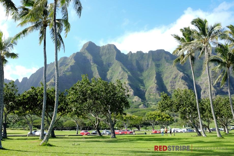 Hawaii2014-11