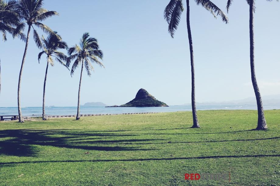 Hawaii2014-13