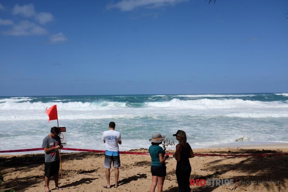 Hawaii2014-18
